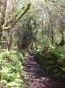 Exmoor Scenery_16