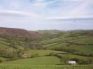 Exmoor Scenery_9