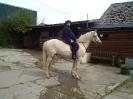 Galloping Granny!_1