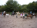 School Horses and their Activities