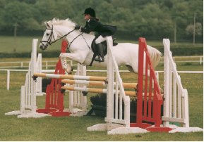 Showjumping Team_2