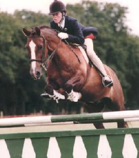 Showjumping Team_4