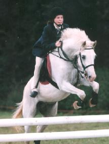 Showjumping Team_7