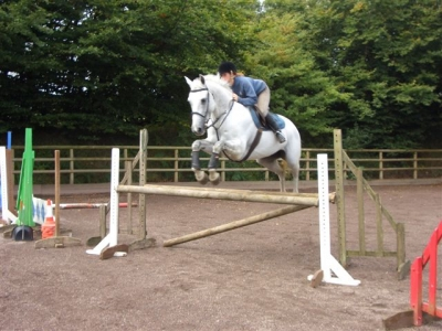 Showjumping Team_8